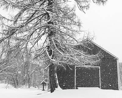Wayside Inn Red Barn Covered In Snow Storm Reflection Black And White Print by Toby McGuire