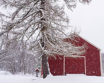 Wayside Inn Red Barn Covered In Snow Storm Reflection Print by Toby McGuire