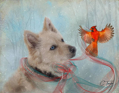 Snow Scene Mixed Media - We Can All Get Along by Colleen Taylor
