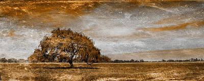 Weathered Print by Az Jackson