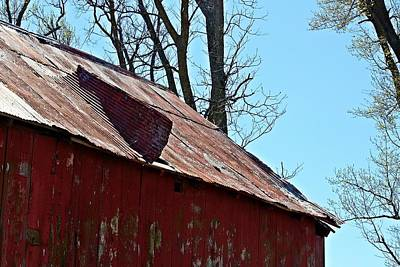 Nature Photograph - Weathered Barn Roof- Fine Art by KayeCee Spain