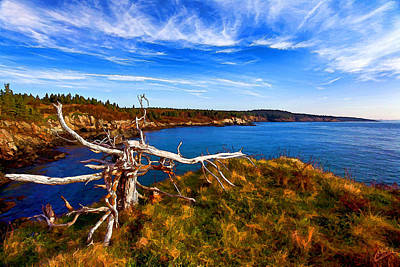 Coastal Maine Photograph - Weathered Coast by Bill Caldwell -        ABeautifulSky Photography
