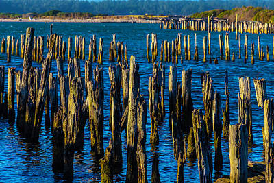 Weathered Pier Posts Print by Garry Gay