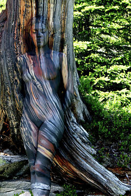 Bodypaint Painting - Weathered Swiss Pine by Johannes Stoetter