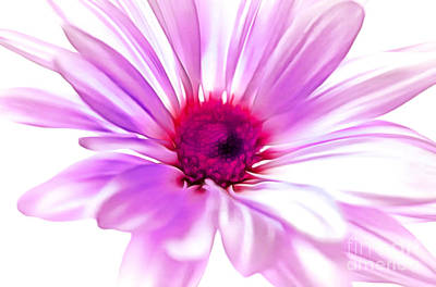 Abstract Digital Art Photograph - Welcome Spring by Krissy Katsimbras
