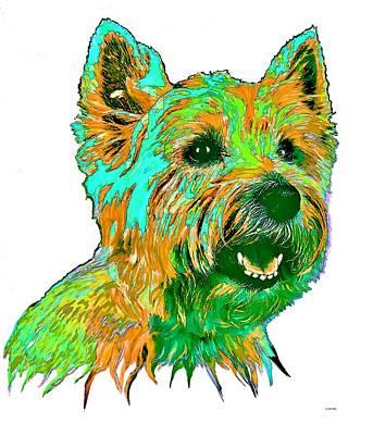 Westie Digital Art - West Highland Terrier by Marlene Watson