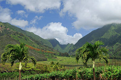 Hawaii Photograph - West Maui Mountain Puu Kukui Gulch At Tropical Plantation by Reimar Gaertner