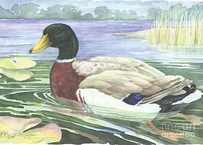 Mallards Painting - Wetland Mallard - Male by Paul Brent