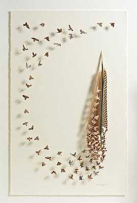 Shadowbox Mixed Media - What Happens When You Tip A Feather Upside Down by Chris Maynard