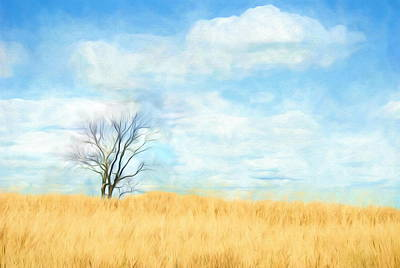 Photograph - Wheat Fields Of Home by Andrea Kollo