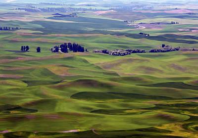 Wheat Fields Of The Palouse - Eastern Washington State Print by Daniel Hagerman