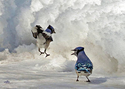 Framed Winter Snow Photograph - When I Say Jump by Brian Pelkey