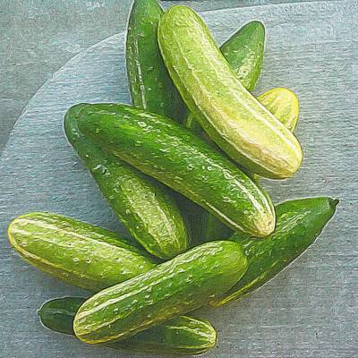 When Life Brings You Cucumbers Print by Michele Meehl