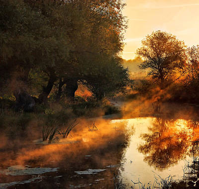 When Nature Paints With Light Print by Jimbi
