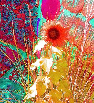 When Sunflowers Dream Print by Ann Johndro-Collins