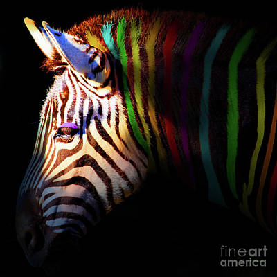Zebra Digital Art - When Zebras Dream 7d8908 Square by Wingsdomain Art and Photography