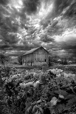 Heaven Photograph - Where Ghosts Of Old Dwell And Hold by Phil Koch