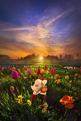 Amber Photograph - Wherever The Journey Takes Us by Phil Koch