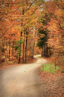 Photograph - White Oak Road by Lori Deiter