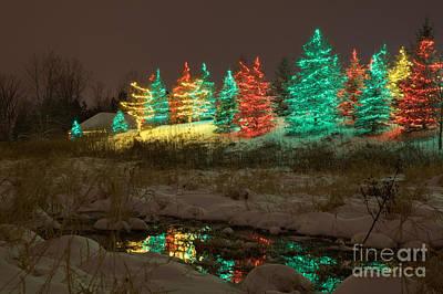 Whimsical Christmas Lights Print by Wayne Moran