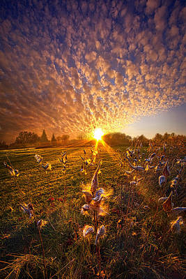 Unity Photograph - Whisper The Wind Into The Light by Phil Koch