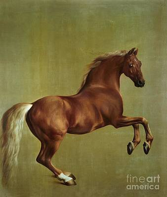 Rear Painting - Whistlejacket by George Stubbs