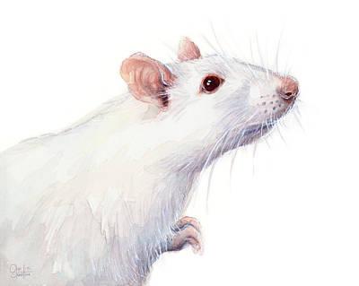 White Albino Rat Watercolor Print by Olga Shvartsur