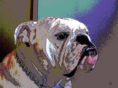 White Bulldog Print by Charles Shoup