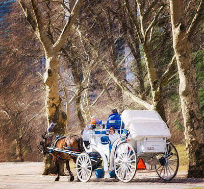 White Carriage In Central Park Print by Vicki Jauron
