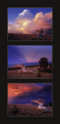 White Clouds Triptych Print by Leland D Howard