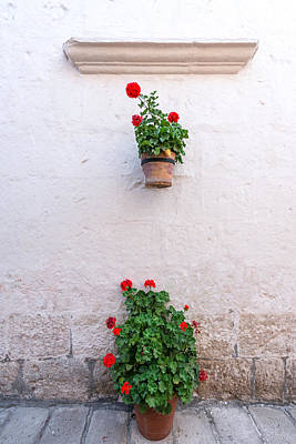 White Colonial Wall And Flowers Print by Jess Kraft