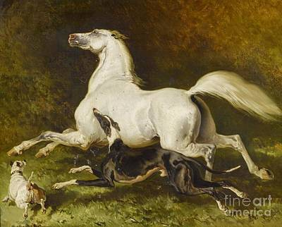White Horse With Two Dogs Print by MotionAge Designs