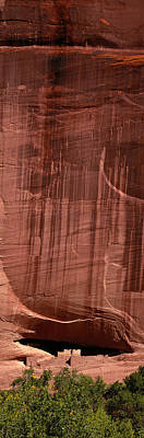 Chelly Photograph - White House Ruin Canyon De Chelly by Panoramic Images