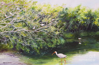White Ibis Haven Print by Karol Wyckoff