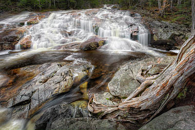 White Mountain Waterfalls Print by Bill Wakeley