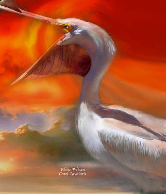 Pelican Mixed Media - White Pelican by Carol Cavalaris
