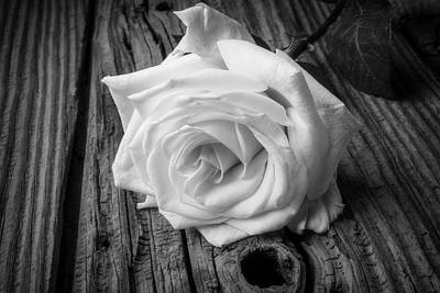 Knotholes Photograph - White Rose On Wood by Garry Gay