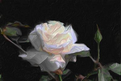 Golds Reds And Greens Digital Art - White Rose Painting by Don  Wright