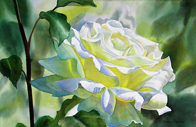 Floral Watercolor Painting - White Rose With Yellow Glow by Sharon Freeman