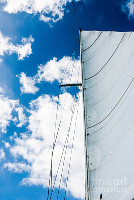 White Sail White Clouds Blue Sky Print by Thomas Marchessault