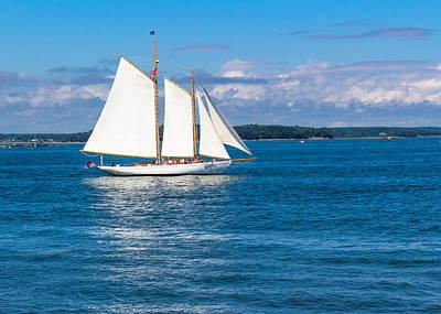 Coastal Maine Photograph - White Sails by Laurie Breton