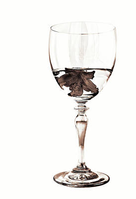 Wine Glasses Photograph - White Wine In Sepia by Marcia Colelli