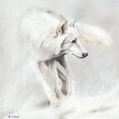 Wolf Drawing - Whiteout by Peter Williams