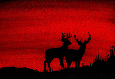 Whitetail Deer At Sunset Print by Michael Vigliotti
