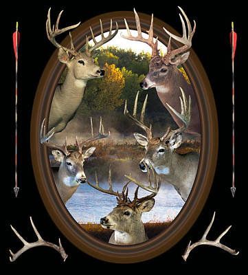 Whitetail Dreams Print by Shane Bechler