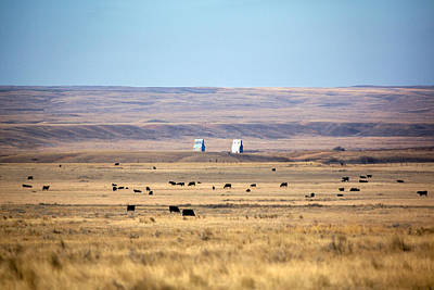Cattle Drive Photograph - Whitewater Skyline by Todd Klassy