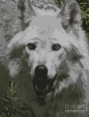 Wolf Face Painting - Wide Eyes Vision by Debra     Vatalaro