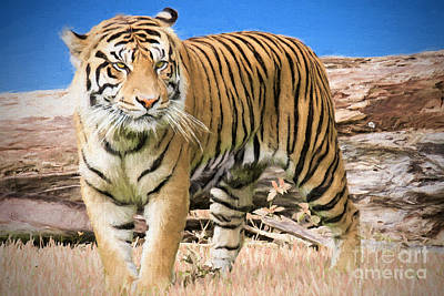 Bengal Tiger Painting - Wild And Untamed by Judy Kay