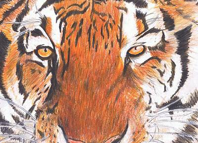 Cat Painting - Wild Beauty by Demian Legg