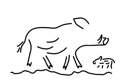 Enclosure Drawing - Wild Boar Young Wild Sow by Lineamentum